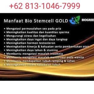 sedang mencari Apa manfaat bio stemcell gold, manfaat bio stemcell gold, manfaat bio stemcell gold diminum siang hari, Bio stemcell gold kegunaan, Bio stemcell gold khasiat.