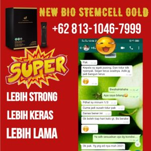 Obat kuat herbal pria terbaik, bio stemcell gold