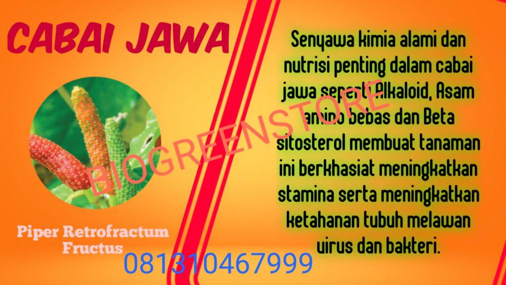 Bahan Aktif Bio Inflavia Cabai Jawa