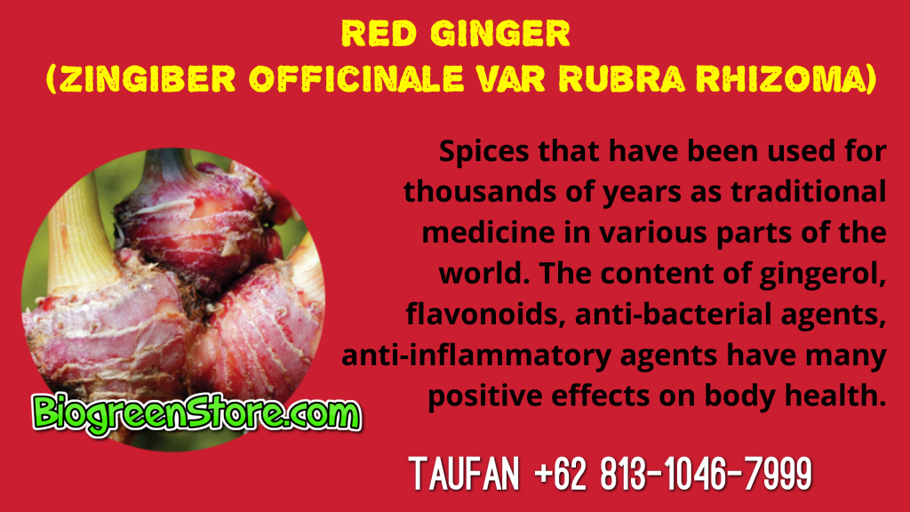 Bio Inflavia Indonesia Traditional Medicine red ginger