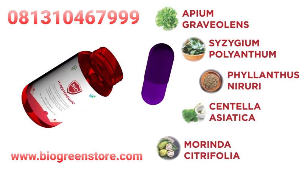 Bio hypertenguard Biogreen herbal hipertensi